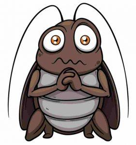 cockroach-allergens