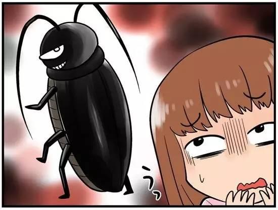 耳朵跑進蟑螂防治